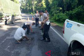 Polisi Jembrana tambal jalan berlubang