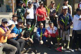 PLN Bali Utara tanam 1.040 pohon