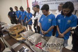 BNN Bali tangkap lima pengedar ganja