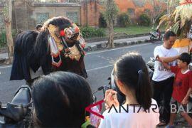 Liburan Galungan, siswa Tabanan gelar atraksi Barong Bangkung