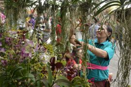 Wisatawan mancanegara antusias kunjungi festival budaya pertanian Badung