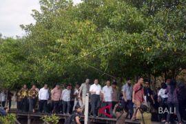 Kunjungan Presiden World Bank di Bali