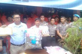 Polda Bali tangani 593 kasus peredaran narkoba