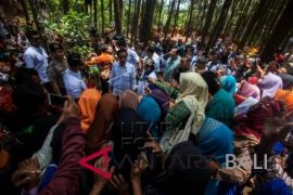Presiden: hutan Indonesia terluas kesembilan di dunia