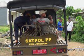 Satpol PP Jembrana razia belasan penduduk pendatang