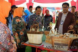 Dana desa gerakkan pembangunan serentak di seluruh Indonesia