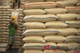 Pengamat ingatkan pasokan beras terbatas jelang akhir tahun