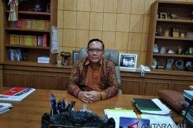 Prof Damriyasa