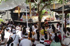 Ratusan mahasiswa Unhi Denpasar
