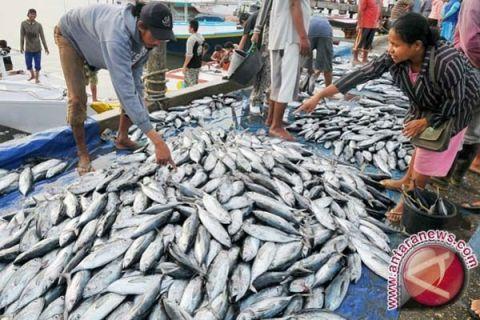 DPR cek dugaan impor ikan tuna