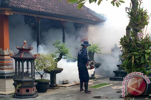 Turun, kasus DBD di Denpasar