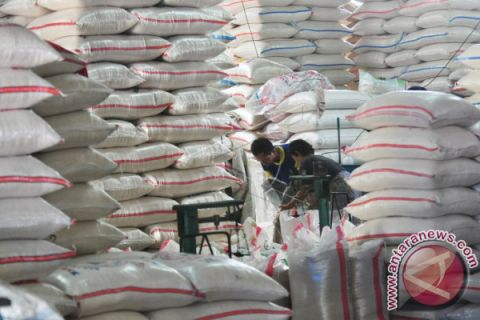 Govt opens rice import option