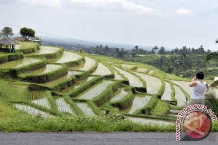 Objek Wisata Jatiluwih-Tabanan Longsor