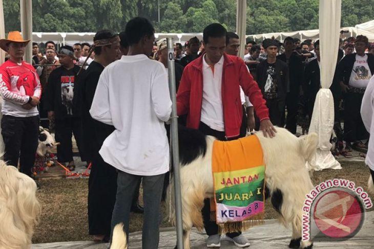 Presiden Jokowi Pamerkan Hasil Ternak