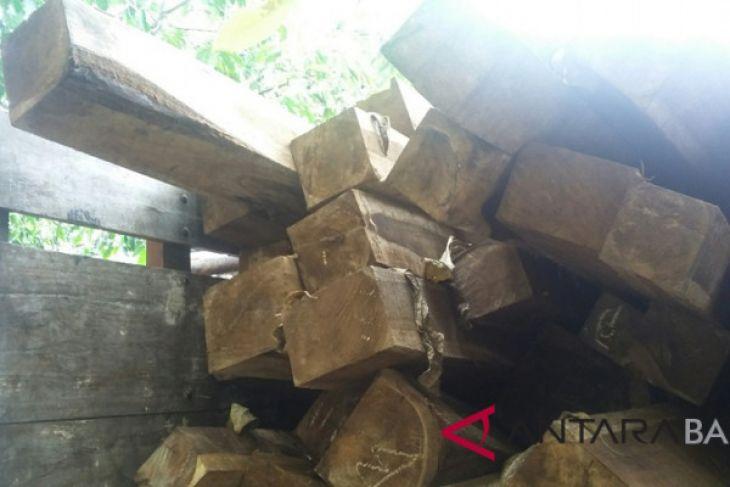 Polisi Jembrana gagalkan penyelundupan kayu ke Jawa