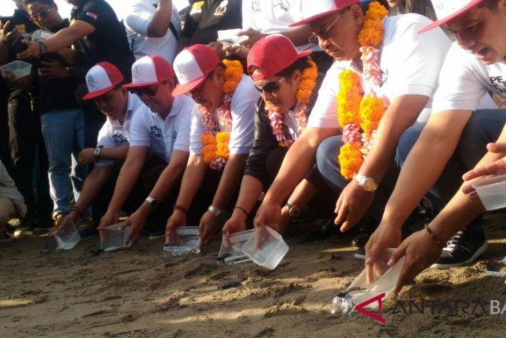 Wagub Bali lepas tukik di Pantai Petitenget