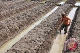 LSHJ: BPN Jangan Mudah Tetapkan Tanah Terlantar