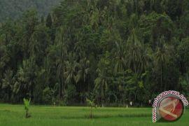 Gubernur: Tahura Banten Sarana Pendidkan Berbasis Alam