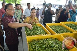 Manajemen Holding Perkebunan Nusantara Angkat Komisaris