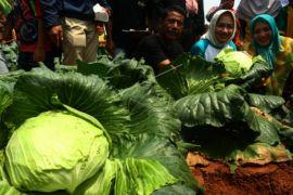 Banten Oktober Deflasi  0,02 Persen