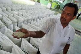 Kementan Optimistis Produksi Gula Lokal Cukup