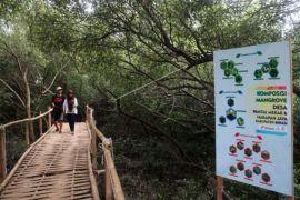 Legislator Tangerang Pertahankan Jalur Hijau Pertanian