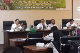 Banten Terus Tingkatkan Produksi Kopi