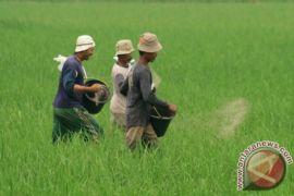 NTP Banten Oktober Naik 0,57 Persen