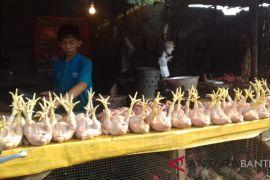 Harga Daging Ayam Dan Telur di Serang Naik