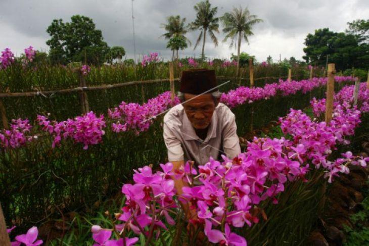 Penggiat Wisata Tangerang Ikuti Pelatihan Peningkatan SDM