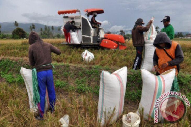 Distanbun Lebak Mendampingi Petani Menggunakan Penerapan Teknologi