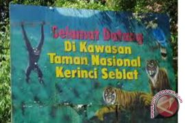 TCFA-Sumatera Dukung Perlindungan 300 Ribu Hektare TNKS