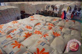 Pemerintah sebaiknya kaji ulang impor beras