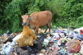 DLH Mukomuko batal tutup tempat pembuangan sampah