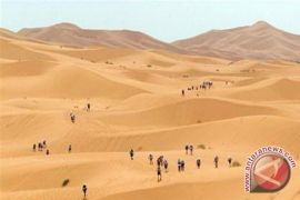 92 imigran ditemukan tewas di Sahara setelah gagal menyeberang