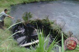 Sejumlah perusahaan sawit manfaatkan limbah untuk pupuk