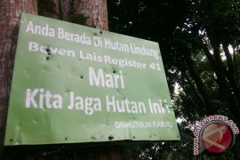 Perhutanan sosial Bengkulu capai 32 ribu hektare