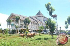 Pemkab Mukomuko tetapkan kawasan tanpa hewan ternak