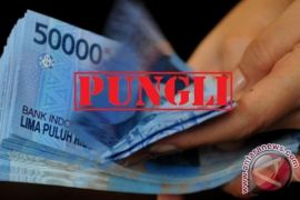 DPMD belum terima putusan hukum pemberhentian kades pungli