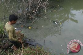 DKP Mukomuko larang menangkap ikan dengan racun