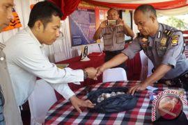 BKSDA Bengkulu amankan puluhan telur penyu belimbing