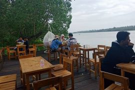 Taman Badrika tawarkan wisata mangrove Jenggalu