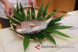 Mencicipi olahan ikan tai dari Jepang