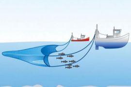 Mayoritas nelayan Mukomuko keberatan ganti
