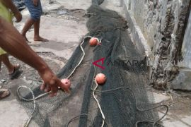 Nelayan tradisional Bengkulu sita alat tangkap trawl
