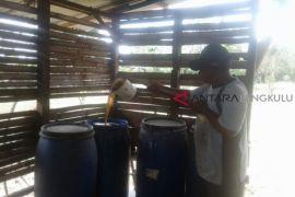 Selamet kembangkan pupuk urine kambing