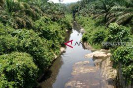Walhi Bengkulu soroti pencemaran Sungai Mertam