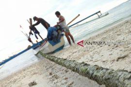 Nelayan Bengkulu Selatan sulit prediksi kerumunan ikan