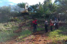 BKSDA babat ribuan sawit ilegal dalam hutan