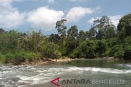 Investor lirik energi terbarukan di Bengkulu Selatan
